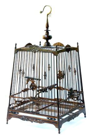 birdcase.jpg